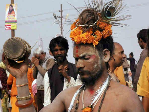 harvard university studying maha kumbh mela