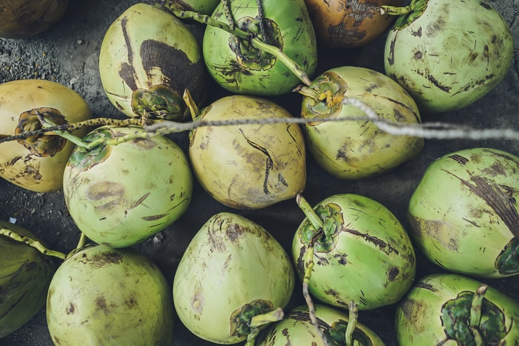 coconut water benefits in hindi