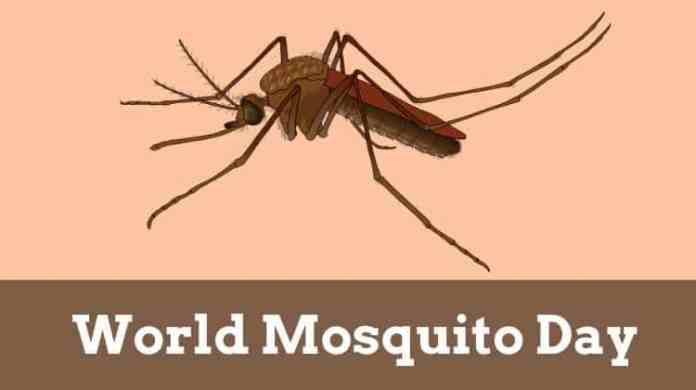 World Mosquito Day 2020