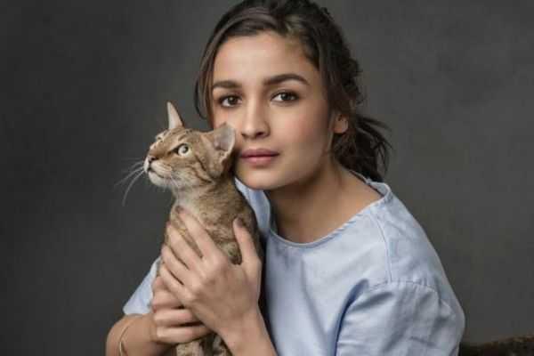 alia bhatt with cat