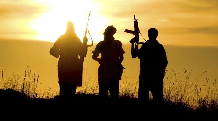 हिजबुल मुजाहिदीन, आतंकवाद