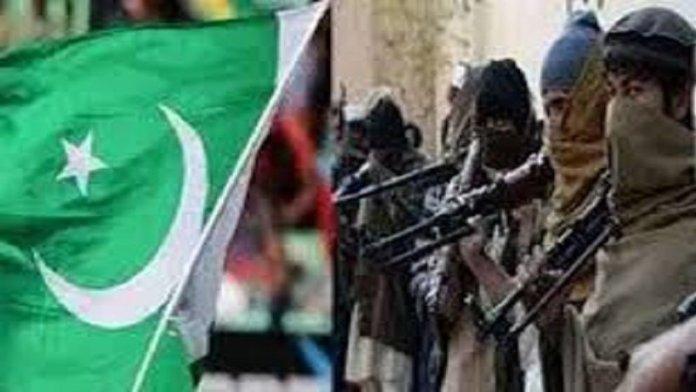 पाकिस्तान, जिहादी संगठन