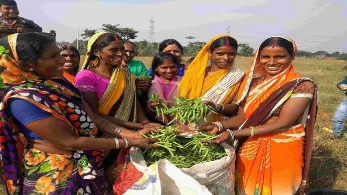 महिला किसान, सरकारी योजना