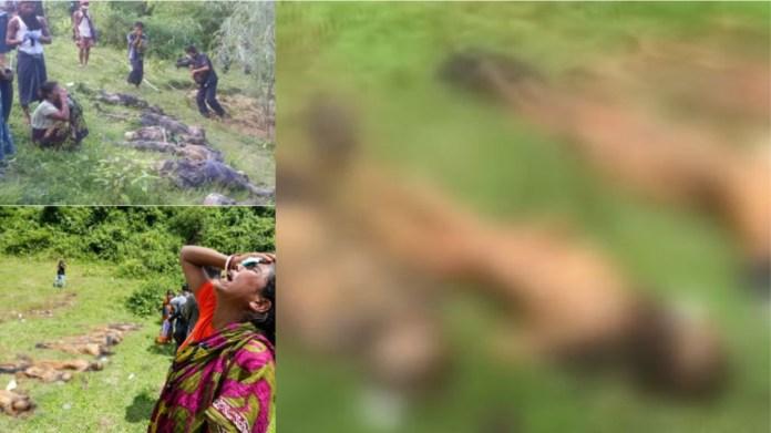म्यांमार रखाइन प्रांत में हिंदुओं का नरसंहार