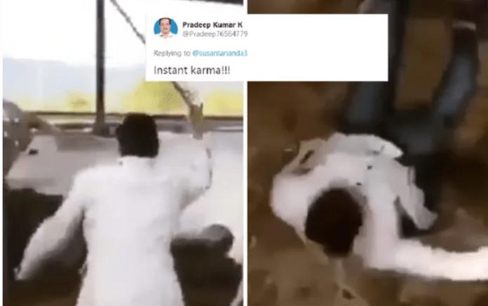 गाय पिटाई वायरल वीडियो