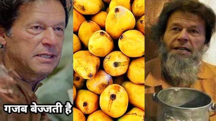 मैंगो डिप्लोमेसी पाकिस्तान