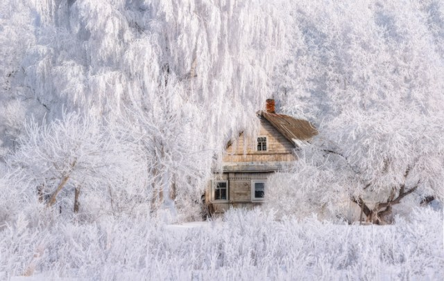 15+ Pictures That Capture the Magic of Winter Like a Scene From a Frozen Fairyland