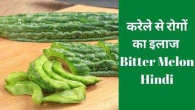Photo of करेले से रोगों का इलाज – Bitter Melon Hindi