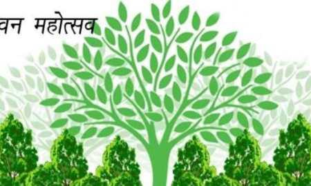Van Mahotsav Par Nibandh in Hindi