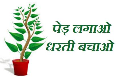 Van Mahotsav Speech 2018, Van Mahotsav Speech in Hindi