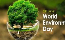 World Environment Day par Shayari in hindi 2019