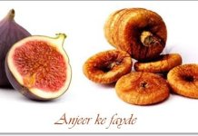 fig dry fruit