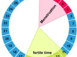 ovulation checker