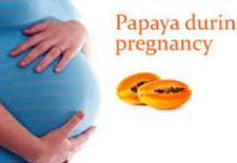 papaya in pregnancy