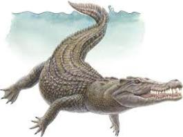 crocodile dream meaning in hindi