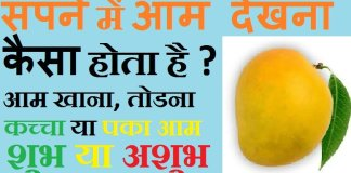 mango dream meaning in hindi