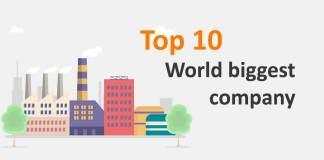 दुनिया की सबसे बड़ी कंपनी
