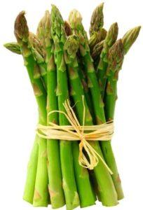 Bamboo-Shoot