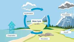 Read more about the article Water cycle diagram क्या है? Water cycle का मतलब क्या होता है(About Water cycle diagram)