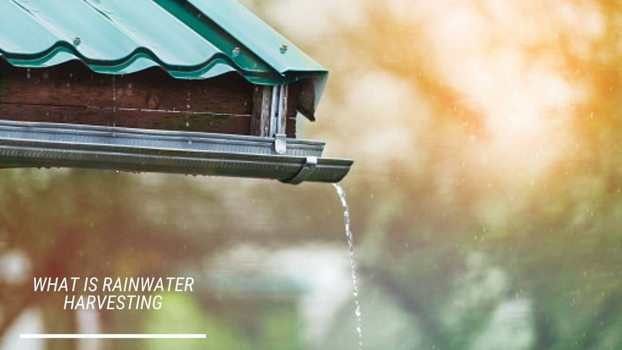 You are currently viewing What is Rainwater Harvesting, Meaning, Definition, Concept of Rainwater Harvesting