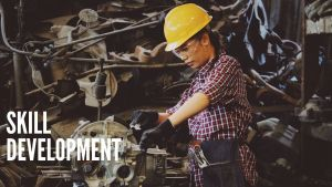 Read more about the article What is Skill Development, Meaning, Definition, Issues in Skill Development