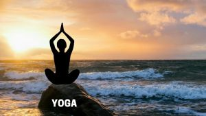 Read more about the article What is Yoga, Meaning, Benefits of Yoga, Various form of Yoga, History of Yoga
