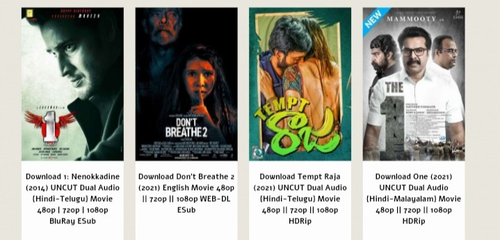 Which types of movies download from  Afilmywap