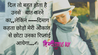 Attitude Status For Boy in Hindi