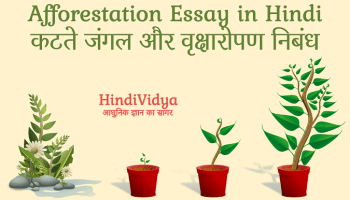Essay pay writing global warming in hindi
