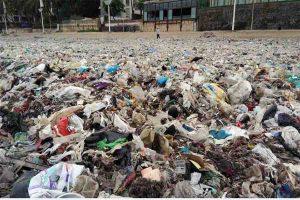 Read more about the article समुद्र को स्वच्छ बनाने वाला प्रोजेक्ट ब्लू
