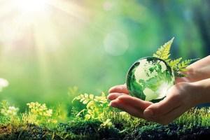 Read more about the article पर्यावरण सरंक्षण और भारतीय मूल्य