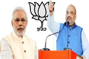 Read more about the article मुख्यमंत्री बदलना  भाजपा की चुनावी रणनीति