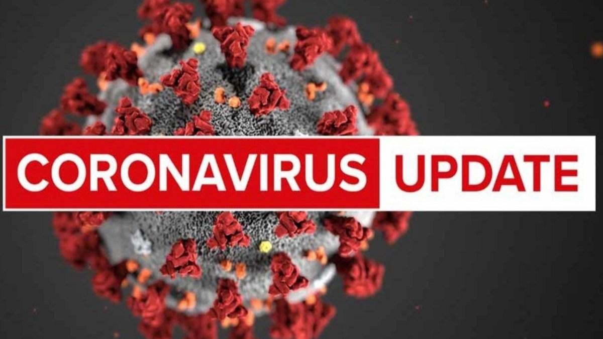 देश में बढ़ते कोरोनावायरस के मामलों के साथ ही आ रहीं हैं खुशखबरियां