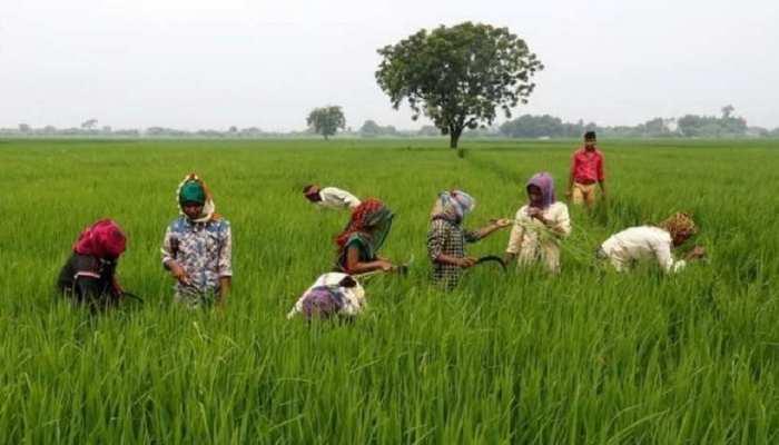 प्रधानमंत्री नरेंद्र मोदी ने किसानों के खाते में डाले 2000 रूपये, घर बैठे ऐसे करें चेक