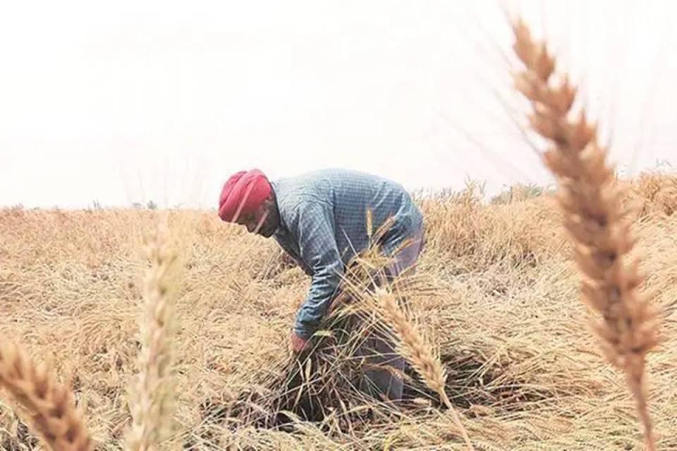 बजट 2021-22 में किसानों और गांव के आम लोगों को क्या-क्या मिला, देखिए