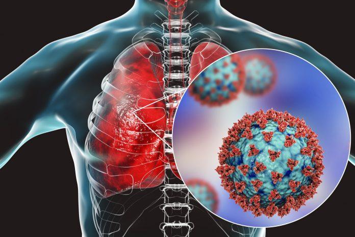 कोरोनावायरस से बचाव में फेफड़े को मजबूत करने के लिए आज ही अपने डाईट में शामिल करें ये 5 चीजें