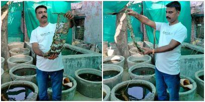 Success Story: कभी घर चलाने के लिए बेचते थे किताब, अब घर पर मोती की खेती कर 5 लाख सलाना कमा रहे नरेंद्र गरवा