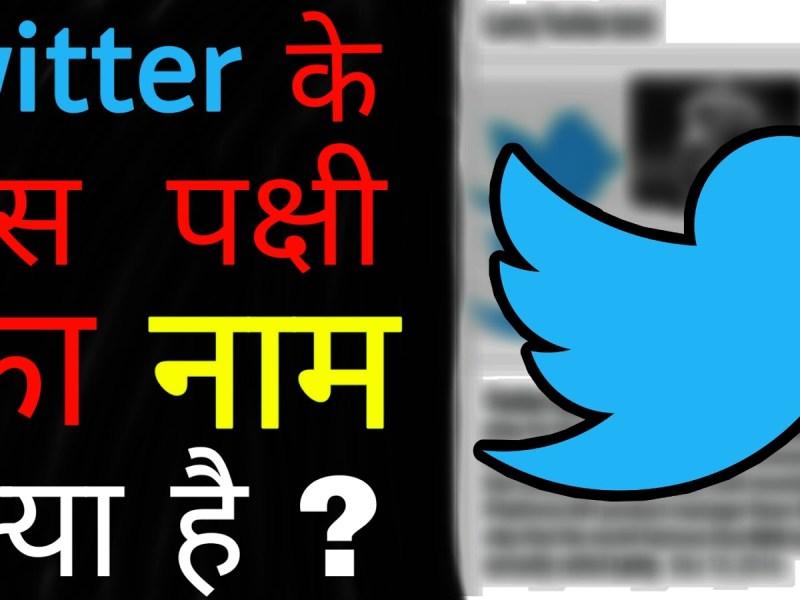Ias Interview Questions With Answers In Hindi: ट्विटर पर दिखने वाली चिड़िया का क्या नाम है?