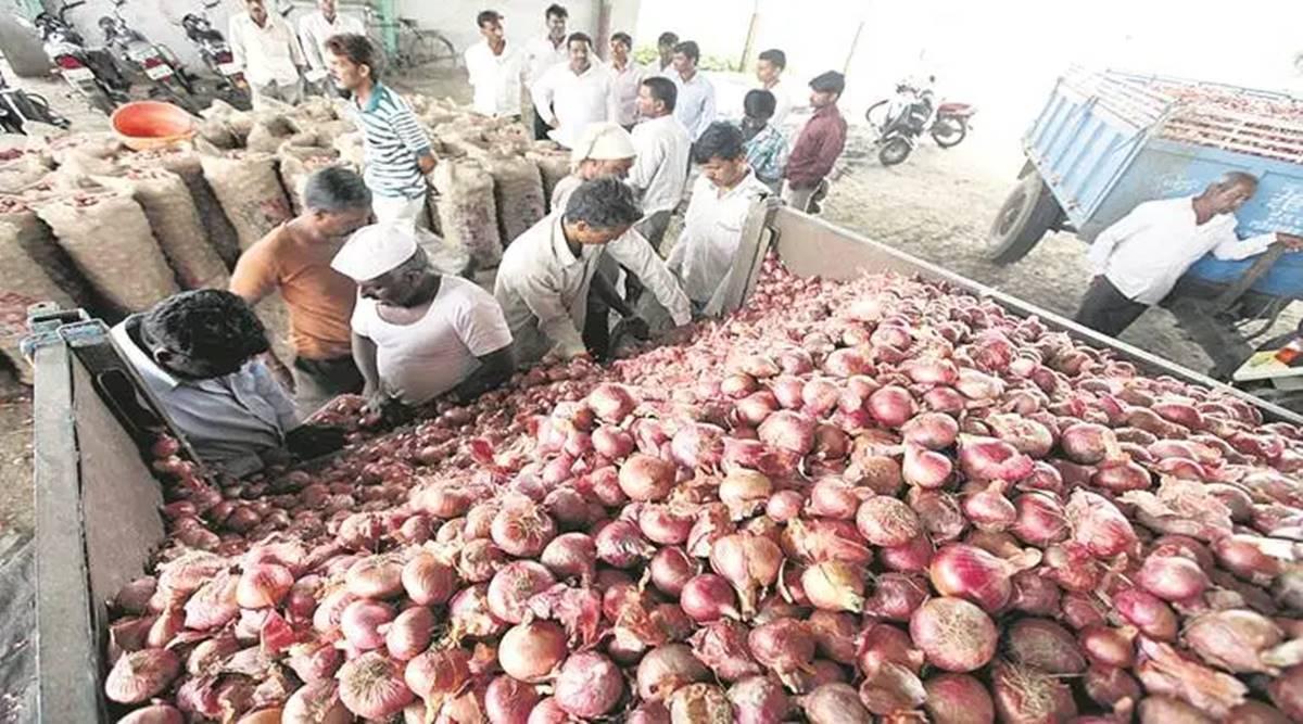 Onion Price: काबू में आई प्याज की कीमत, फुटकर में इतना हुआ मूल्य- अभी और गिरेगा भाव