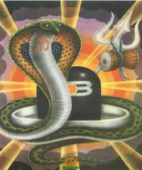 Nag Panchami Serpent God Sanke God