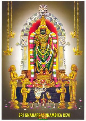 Sri Gnanaprasunambika Devi