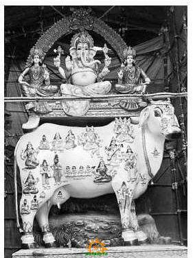 Chaitanyapuri Ganesh 2013 Kamadhenu Vinayaka Ganapathi