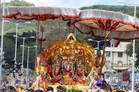 2 Kalpavriksha Vahana Seva TTD Brahmotsavam