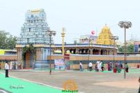 TTD Replica Temple at Rajahmundry Pushkaralu 3