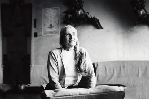 Swami Sivananda Radha Saraswati