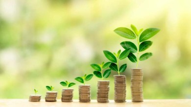Going green: Green financing a priority for heavyweights like Adani and SBI