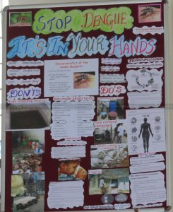 Health Awareness Programme On Dengue