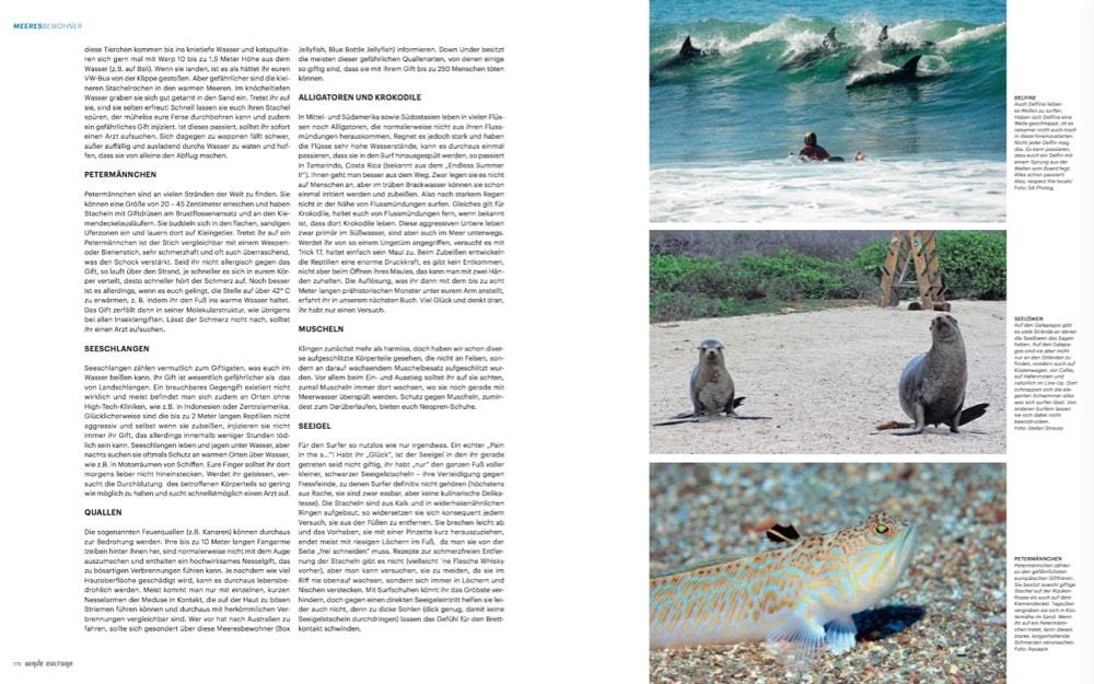 waveculture-21