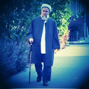 Scheich Muhammad beim Spaziergang