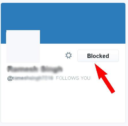 Twitter Spam Followers